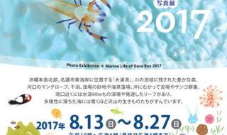 201708_nagohaku_A4flyer_1_doc