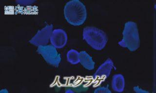 沖縄県-A14-S01
