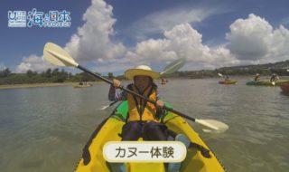 沖縄県-A19-S02