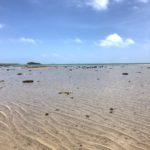 引き潮海2