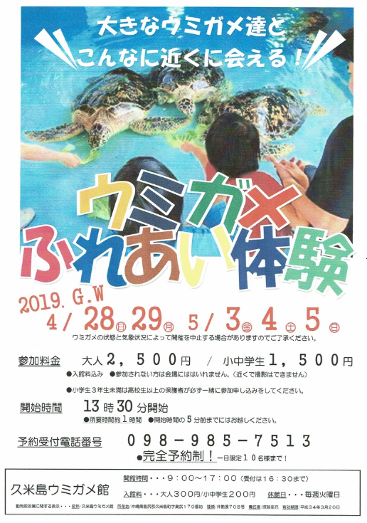 久米島ウミガメふれあい体験