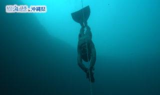 沖縄県-A06-S1