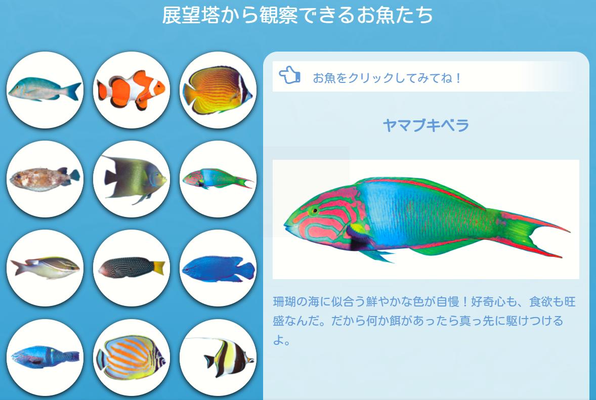 みれる魚の種類