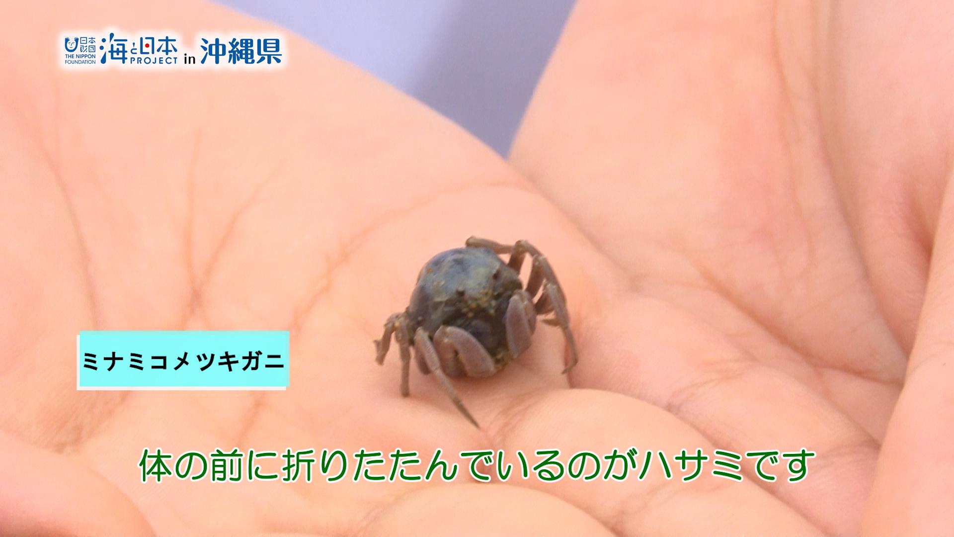 #9 平坂さん.00_01_20_14.静止画010